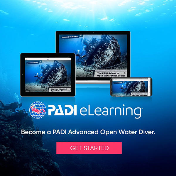 Get Dive Certification before you come - now online!