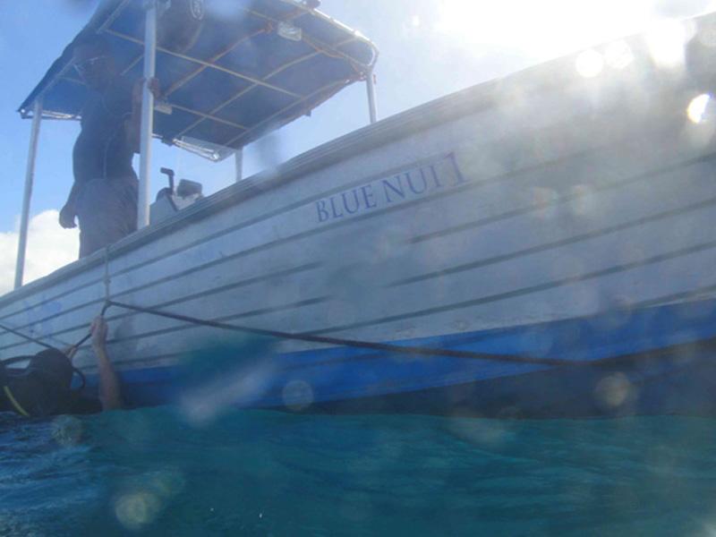 Diveaway Fiji Dive Boat Operations