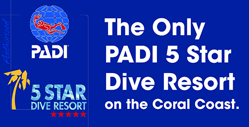 Five Star Dive Resort